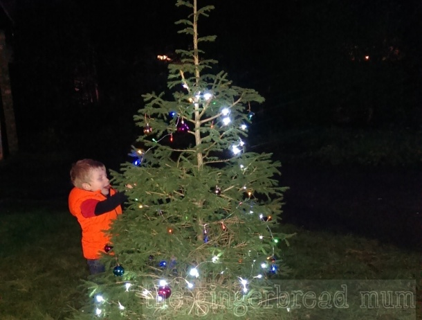Very happily decorating our outside Christmas tree